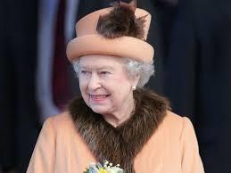"""Fur sales face post-Brexit ban under ministers' proposals"""