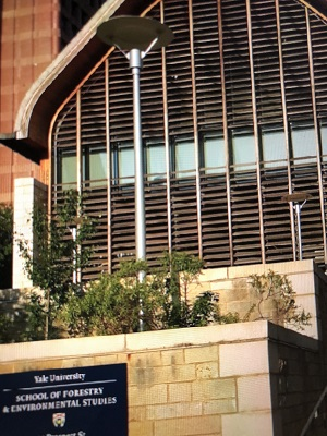 """Justice Department Sues Yale University for Illegal Discrimination Practices in Undergraduate Admissions"""